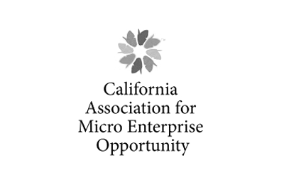 CA Micro Enterprise logo