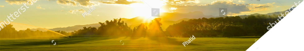 banner image of a sunset in a wide open grassy field