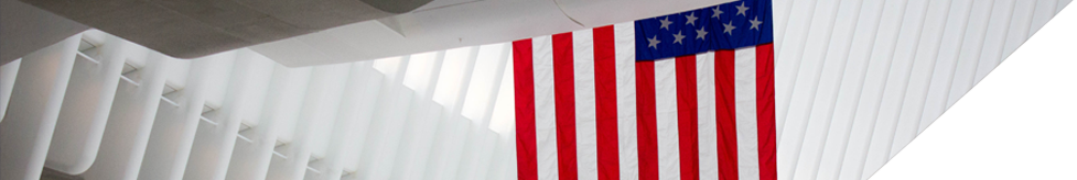 Banner image of the American flag.